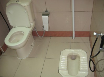 Image result for Multicultural Toilets,